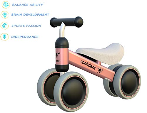 Mingzheng Baby Balance Bikes Toddler Tricycle Baby Bicycle Ride-on Toys Indoor Outdoor for 10-24 Months, Perfect as First Bike or First Birthday Boy Girl Gift Pink