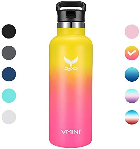 Vmini Water Bottle Stainless Insulated product image