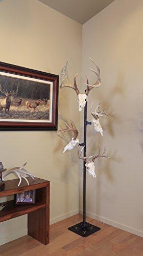 Trophy Tree European Trophy Mount by Skull Hooker – Hang up to 5 Deer Antlers and other Skulls for Display – Graphite Black by Skull Hooker (Image #3)