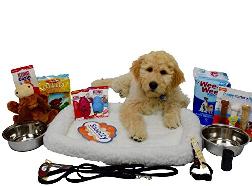 (Open Road Goods Puppy Starter Kit Bundle Deluxe Edition in Gift Box, All Top Name, 5 Star Brands! 6 Foot Leash (1