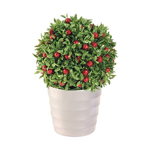 - RAZ Imports Glittered Berry Topiary 6.5 x 9.5 Inch Decorative Christmas Arrangement