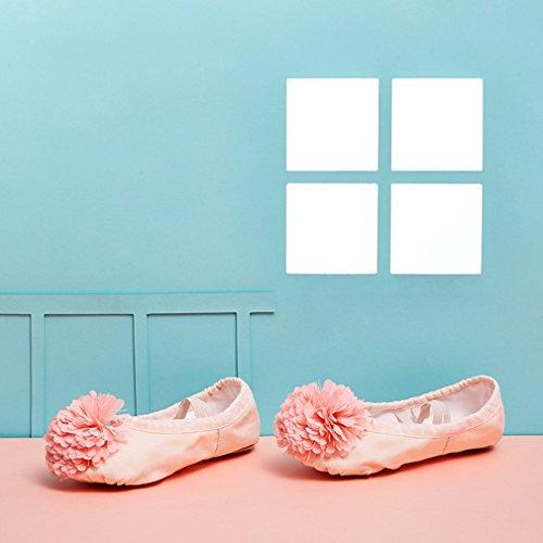 EOZY Ballettschuhe Ballettschläppchen für Mädchen Blumen Leinwand Tanzschuhe Geteilte Sohle Beige