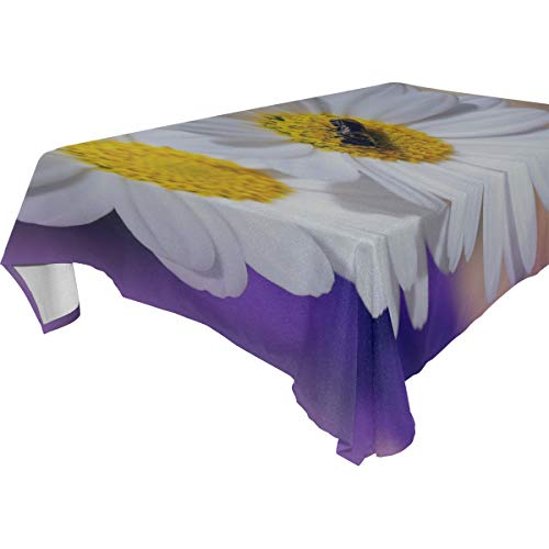 RH Studio Tablecloth Daisies Flowers Insects Rectangular Tablecloth for Dinner Kitchen Party Picni Wedding Restaurant Or Banquet Tablecovers Spread 54x72 Inch