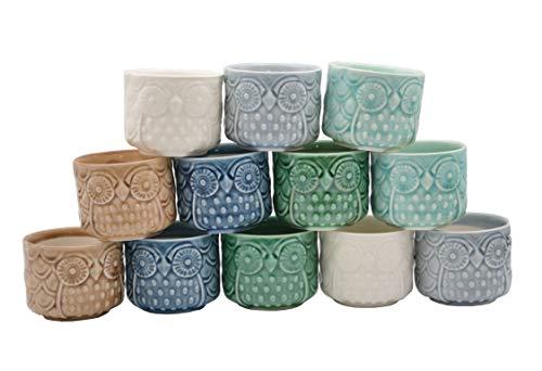 12 PCS Cute Colorful Ceramic Round Owl Succulent Vase Plant Pots (Plants Not Included)