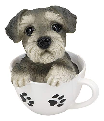 (Ebros Realistic Grey Adorable Schnauzer Dog in Paw Prints Teacup Statue 5.5