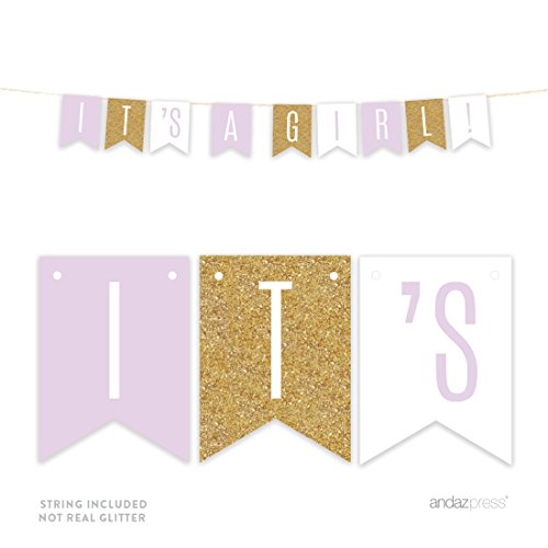 Baby Signature Collection - Andaz Press Signature Lavender, White, Gold Glittering Baby Shower Party Collection, Hanging Pennant Banner, It's a Girl!, Approx. 6-Feet, 1-Set