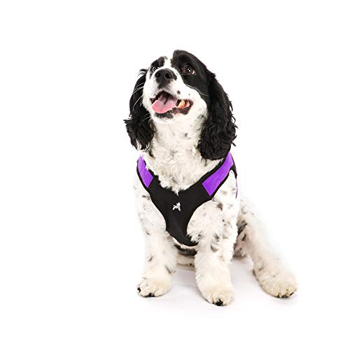 Gooby - Escape Free Easy Fit Harness, Small Dog Step-In Harness for Dogs that Like to Escape Their Harness, Purple, ()