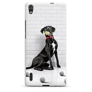 Huawei Ascend P7 Hülle Silikon Case Schutz Cover Hund Dog Tennisball