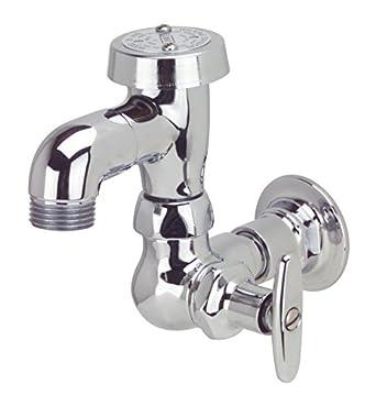 Amazon.com: Zurn Z875L7 Bedpan Washer Hose Bibb: Industrial & Scientific