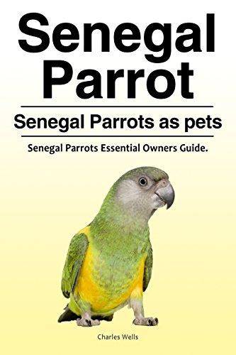 Senegal Parrot. Senegal Parrots as pets. Senegal Parrots Essential Owners Guide.