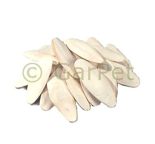 1000gr-1KG-12-20cm-Os-de-Sepia-Os-de-seiche-Sepia-Flux-des-chaux-Calcium-Calcium-1