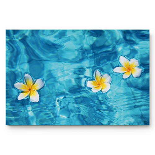 Indoor Non Slip Door Mat Entryway Doormats Watercolor Plumeria Flowers Water Absorb Low Profile Area Rugs Home Decor Floor Runner Carpet 18x30Inch