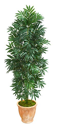 Artificial Tree -5 Foot Bamboo Palm Plant in Terra Cotta Planter ()