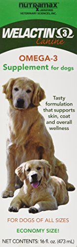 Nutramax Welactin Nutritional Supplement, Liquid, 16 oz - Oil Dog
