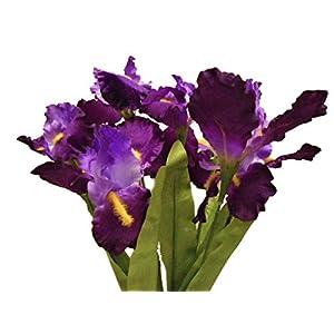 Silk Iris Flowers