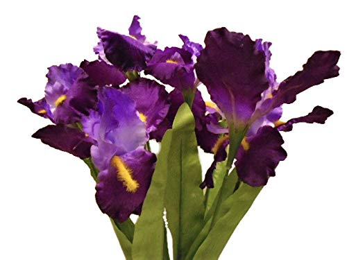 Phoenix Silk Iris Bush Satin 8 Artificial Flowers 22