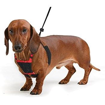 YUP! Nylon Non Pulling Dog Harness, Medium, Red