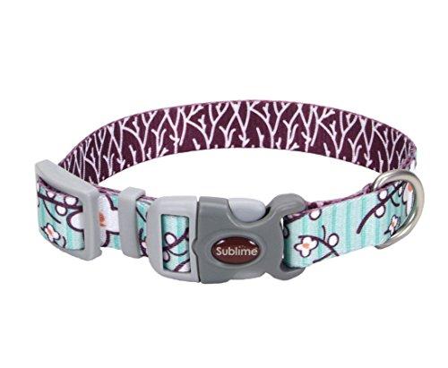 Sublime Coastal Pet Products Oriental Flower Adjustable Dog Collar, 3/4