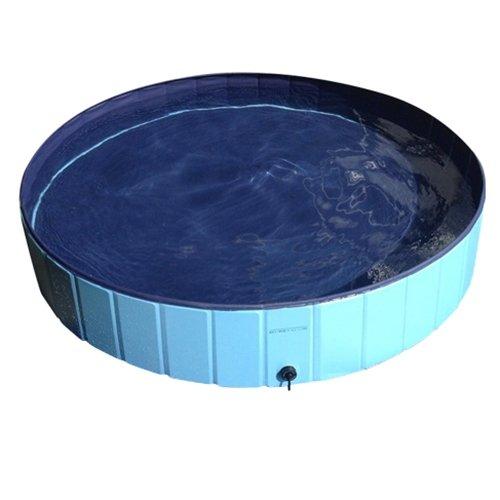 MIA. Home] de perrito de la piscina de perros de la piscina de ...