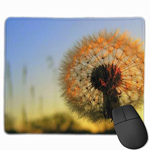 Gaming Mouse Pad Mousepad Custom Design Dandelion Oblong Mouse Mat (9.84 X 11.81Inches )