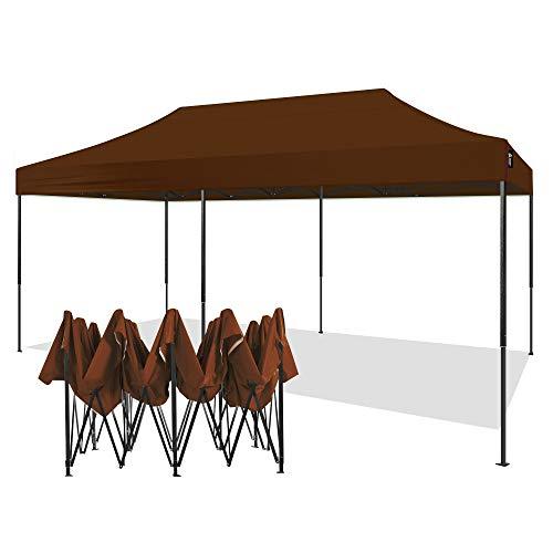 AMERICAN PHOENIX 10x20 Canopy