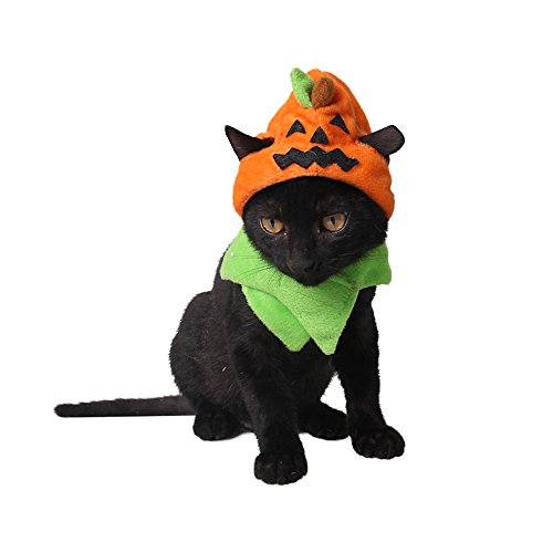 Lecent@ Halloween Decorative Pumpkin Pet Hat Christmas Dog Hat Costumes Pet Hat Necklace for Puppy Cat Kitten