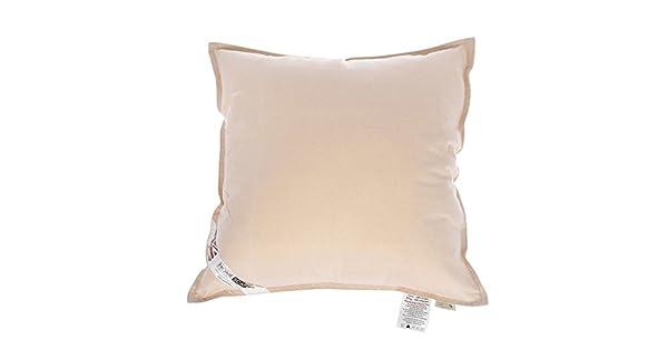 Amazon.com: Homescapes – Cojín de algodón orgánico Pad – 20 ...