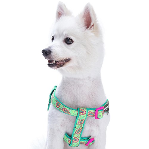Blueberry Pet 5 Colors Soft & Comfy Step-in Paisley Flower Print Dog Harness, Chest Girth 20 - 26, Emerald Green, Medium, Adjustable Harnesses for Dogs