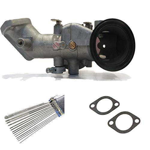 HIFROM New Carburetor Carb KIT with Gaskets 13 Wire Cleaning Tool Carburetor Jet Cleaner for Briggs & Stratton 12HP Engines Replace 491031 490499 281707 491026