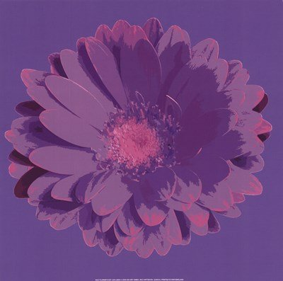 - Flower III by Jan Lens - 12x12 Inches - Art Print Poster