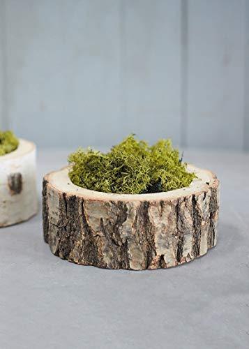 Afloral Natural Oak Wood Forest Bowl Planter - 2