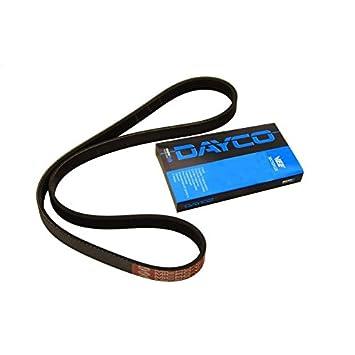 Dayco 5PK1030 Poly Rib Belt