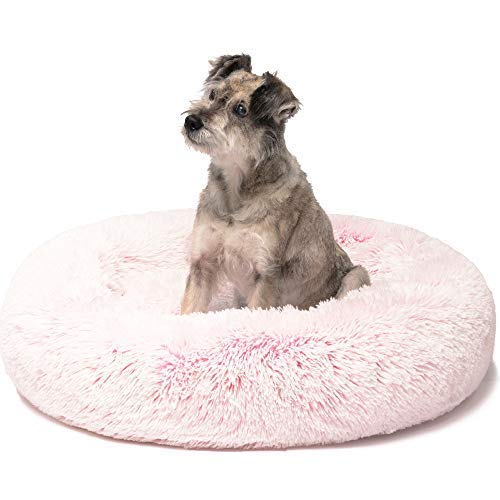 Friends Forever Premium Donut Bolster Orthopedic Dog Bed for Puppy to Medium Dogs & Cat, Medium Pink by Friends Forever (Image #1)