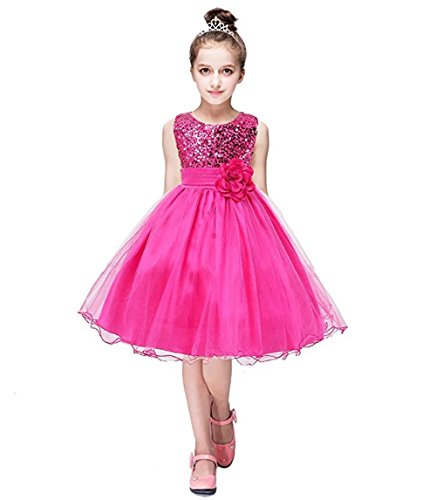 ZAH Sequin Mesh Flower Party Wedding Gown Bridesmaid Tulle Dress Little Girl(Hot Pink,10Y)
