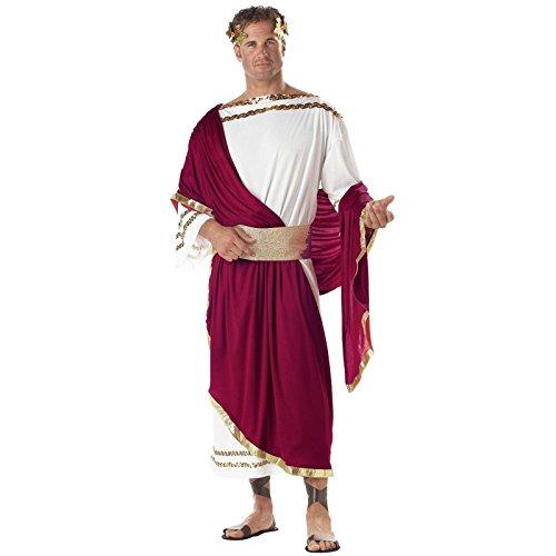 Adult Caesar Costumes (Julius Caesar Costume - One Size - Chest Size 40-44)