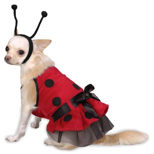 Casual Canine Plush Lady Bug Dog Costume, Large, 20-Inch, My Pet Supplies