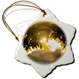 3dRose Stamp City - Nature - Photograph of a suolar Lens Flare Through The Maple Leaves. - 3 inch Snowflake Porcelain Ornament (ORN_291312_1)