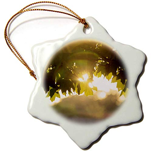 3dRose Stamp City - Nature - Photograph of a suolar Lens Flare Through The Maple Leaves. - 3 inch Snowflake Porcelain Ornament (ORN_291312_1) by 3dRose