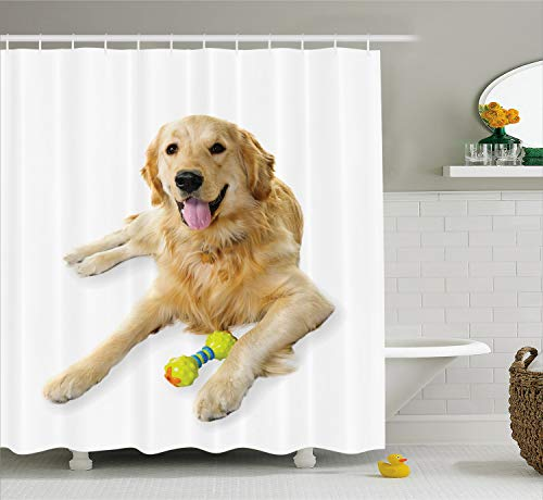 Retriever School Bathroom Accessories - Ambesonne Golden Retriever Shower Curtain, Pet Dog Laying Down with Toy Friendly Domestic Puppy Playful Companion, Cloth Fabric Bathroom Decor Set with Hooks, 70