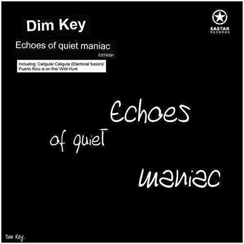 Echoes of Quiet Maniac