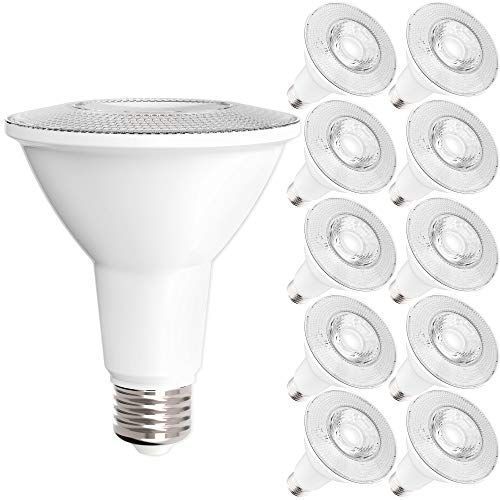 75 Watt Cfl Flood Light