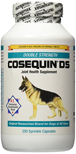 Nutramax Cosequin DS Double Strength Capsules, 250 Count