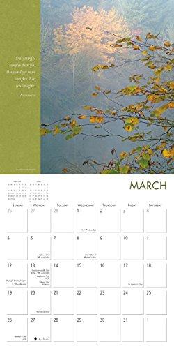 Simplicity 2017 Wall Calendar