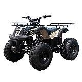 125cc ATV 4 Wheels Wheelers Quad 125 ATV Quads with