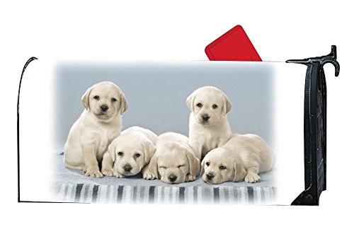 jiajufushi Unique Mailbox Makeover Cute Labrador Puppies Mailbox Makover Cover Outdoor,Yard,Garden Magnetic