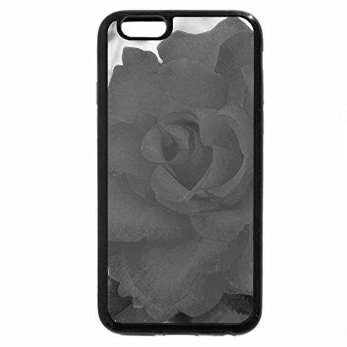 iPhone 6S Plus Case, iPhone 6 Plus Case (Black & White) - Rose floribunda