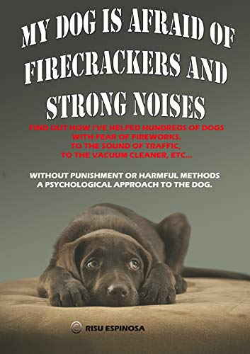 MY DOG IS AFRAID OF FIRECRACKERS AND STRONG - Dog Firecracker