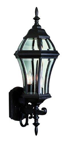 TransGlobe Lighting 4522 Outdoor 25