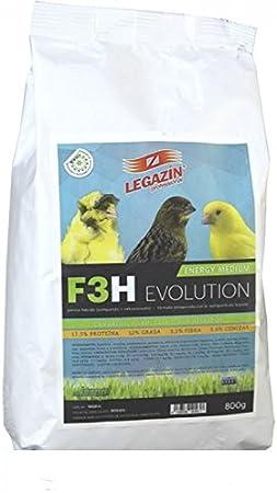 LEGAZIN F3H Energy Medium: Amazon.es: Jardín