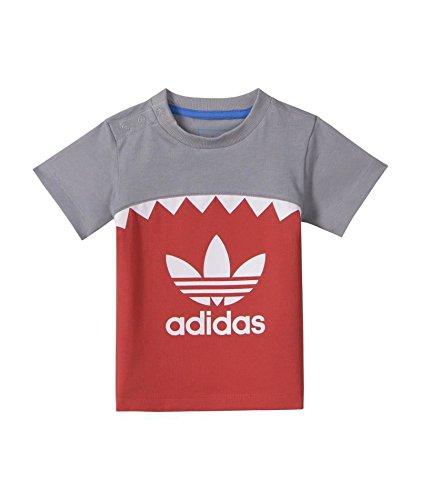 b80c52736ea4e adidas Originals Camiseta Shark Para Niño 62 cm  Amazon.es  Alimentación y  bebidas